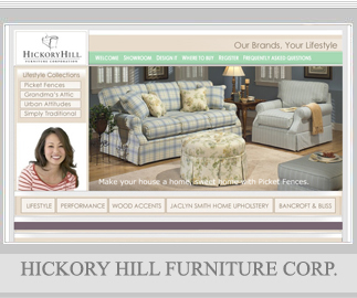 Exceptional Hickory, NC, NY, Charlotte, NC NY TX GA Full Service Web Design,  Professional Marketing